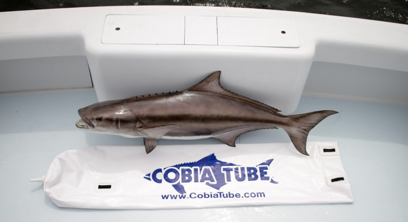 Cobia Tube The Extreme Portable Livewell